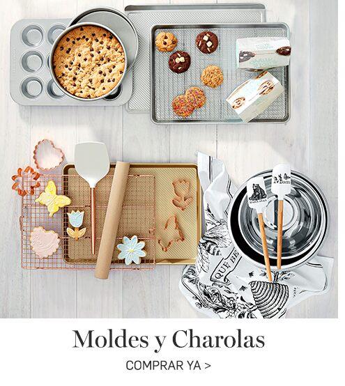 Moldes y Charolas